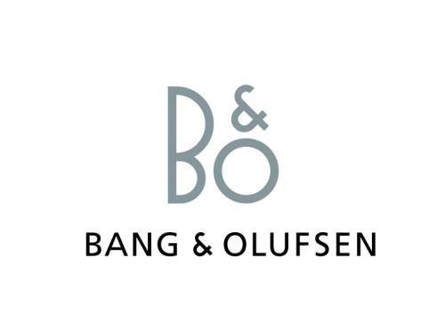 Bang Olfusen